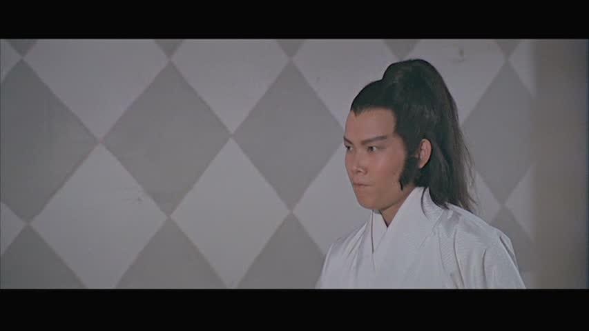 The Martial arts scholar
