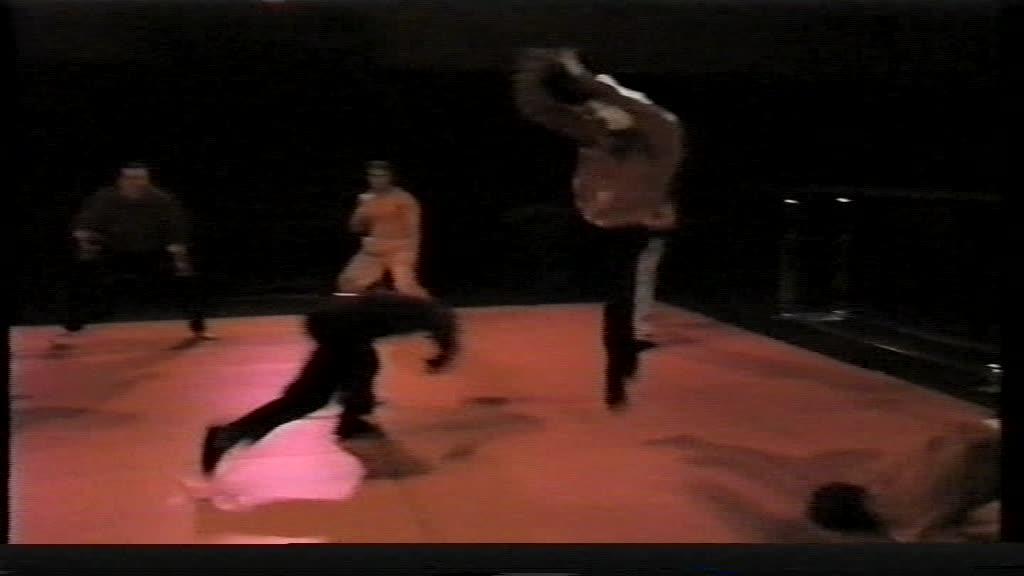 Gladiator style fighting.